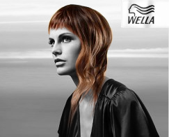Products Wella